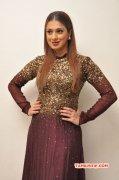 Recent Pictures Raai Laxmi South Actress 9822