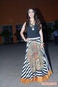 Tamil Actress Raai Laxmi 1245