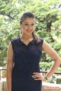 Tamil Actress Raai Laxmi 368