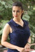 Tamil Actress Raai Laxmi 6266