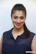 Tamil Actress Raai Laxmi 6658