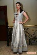 Tamil Actress Raai Laxmi 6956