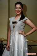 Tamil Actress Raai Laxmi Photos 1031