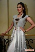 Tamil Actress Raai Laxmi Photos 2174