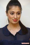 Tamil Actress Raai Laxmi Photos 4352