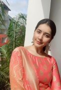 2020 Pics Raashi Khanna South Actress 7779