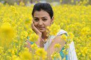 Tamil Actress Radhika Apte 7813
