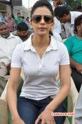 2015 Pic Rakul Preet Singh Actress 9111