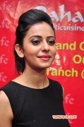 2015 Pics Rakul Preet Singh Movie Actress 5793