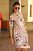 2016 Galleries Rakul Preet Singh Actress 6495