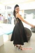 2016 Pictures Rakul Preet Singh Tamil Movie Actress 8933