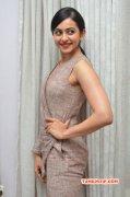 Actress Latest Pic Rakul Preet Singh Interview 234