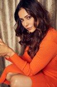 Actress Rakul Preet Singh 2019 Image 4882
