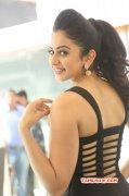 Actress Rakul Preet Singh Jan 2016 Pictures 3422