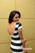 Actress Rakul Preet Singh Oct 2015 Picture 1899