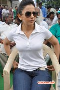 Cinema Actress Rakul Preet Singh 2015 Galleries 3103