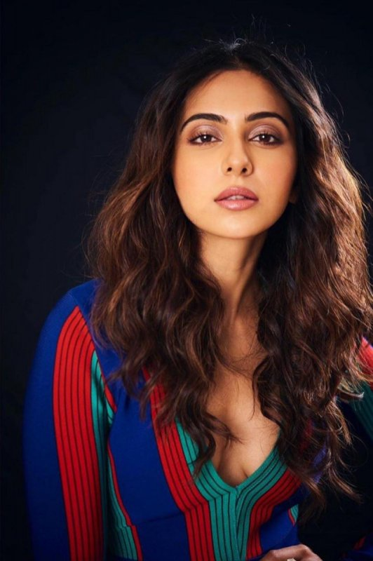 Cinema Actress Rakul Preet Singh Latest Albums 1067