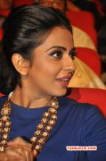 Dec 2015 Wallpaper Rakul Preet Singh Movie Actress 4038