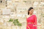 Film Actress Rakul Preet Singh Oct 2015 Album 9106