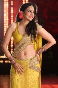 Galleries Rakul Preet Singh Film Actress 9800