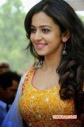 Latest Pics Rakul Preet Singh Indian Actress 9159