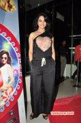 Latest Picture Rakul Preet Singh South Actress 9271