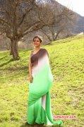 New Image Rakul Preet Singh Tamil Movie Actress 9046