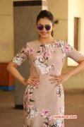 New Stills Rakul Preet Singh Indian Actress 4637