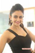 Rakul Preet Hot Actress Wallpaper 756