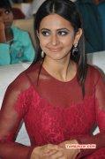 Rakul Preet Singh Cinema Actress Oct 2015 Pictures 8568