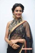 Rakul Preet Singh Cinema Actress Recent Gallery 6590