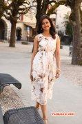 Rakul Preet Singh South Actress Picture 2031