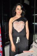 Rakul Preet Singh South Actress Recent Albums 3532