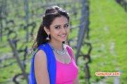 Rakul Preet Singh Tamil Heroine New Photo 6878