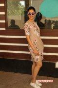 Recent Albums Rakul Preet Singh Actress 333