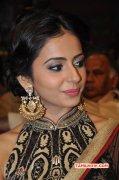 Recent Galleries Rakul Preet Singh Indian Actress 2622