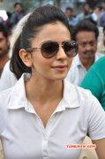 Recent Gallery Rakul Preet Singh Cinema Actress 8988