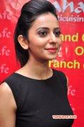 Recent Photo Rakul Preet Singh Tamil Movie Actress 1162