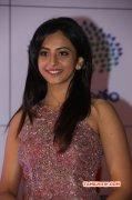 Recent Photos Rakul Preet Singh Tamil Movie Actress 2664
