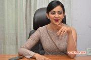 Recent Pic Heroine Rakul Preet Singh 5933