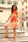 Recent Picture Indian Actress Rakul Preet Singh 3188