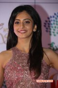 Recent Wallpapers Film Actress Rakul Preet Singh 2520