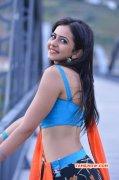South Actress Rakul Preet Singh Latest Albums 4842