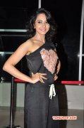 South Actress Rakul Preet Singh Nov 2015 Wallpapers 1537