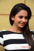 Tamil Actress Rakul Preet Singh Latest Pic 5365