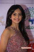 Tamil Movie Actress Rakul Preet Singh Dec 2014 Photo 7238