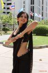 Actress Rakul Preet 8092