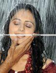 Actress Rakul Preet Photo 13