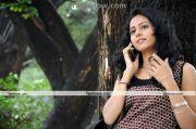 Actress Rakul Preet Photo 5