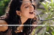 Actress Rakul Preet Photo 9
